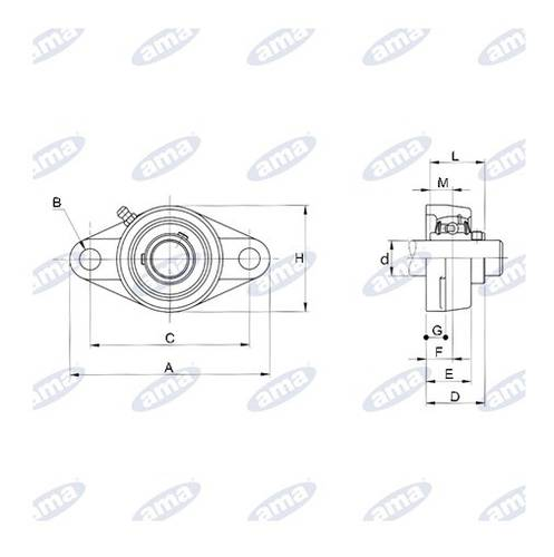 UCFL 208 Two Holes Flange Support Bearing ø 40 mm 07472 Ama