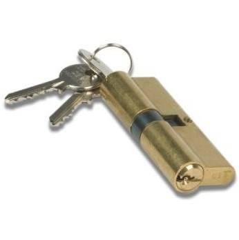 Cilindo profile Brass mm.25x25 8200303074 Iseo