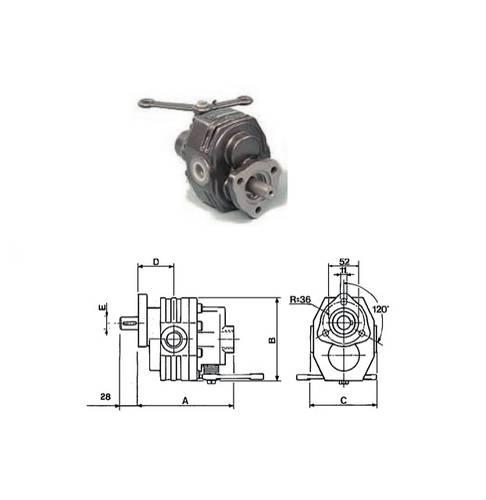 Gear Pump 43 Lt Shaft ø22 mm with Horizontal Distributor 00828 Ama