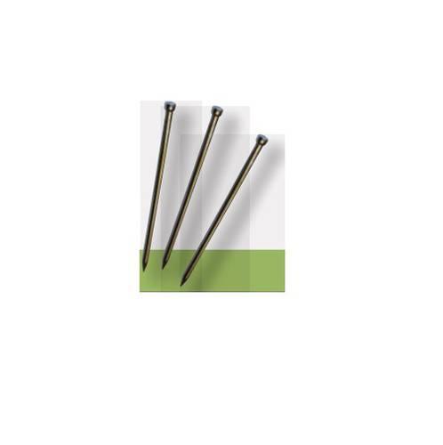Small group iron nails TG