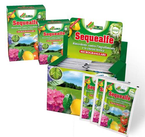 Rinverdente SEQUEALFE 20gr against yellowing Al.Fe